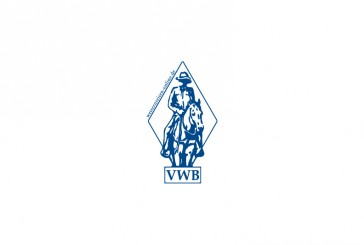 vwb-364x245