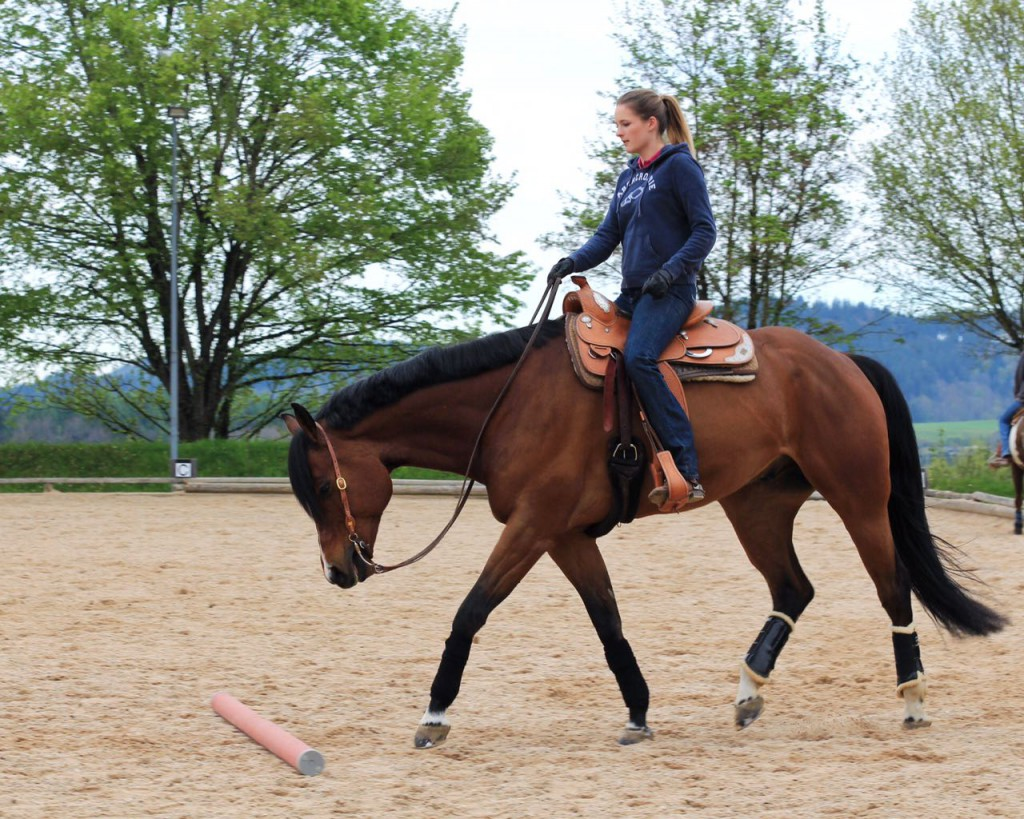 """Laura und ihr Quarter Horse Wallach Potentializing (""""Matze""""); Bild: Markus Pfeifer"""
