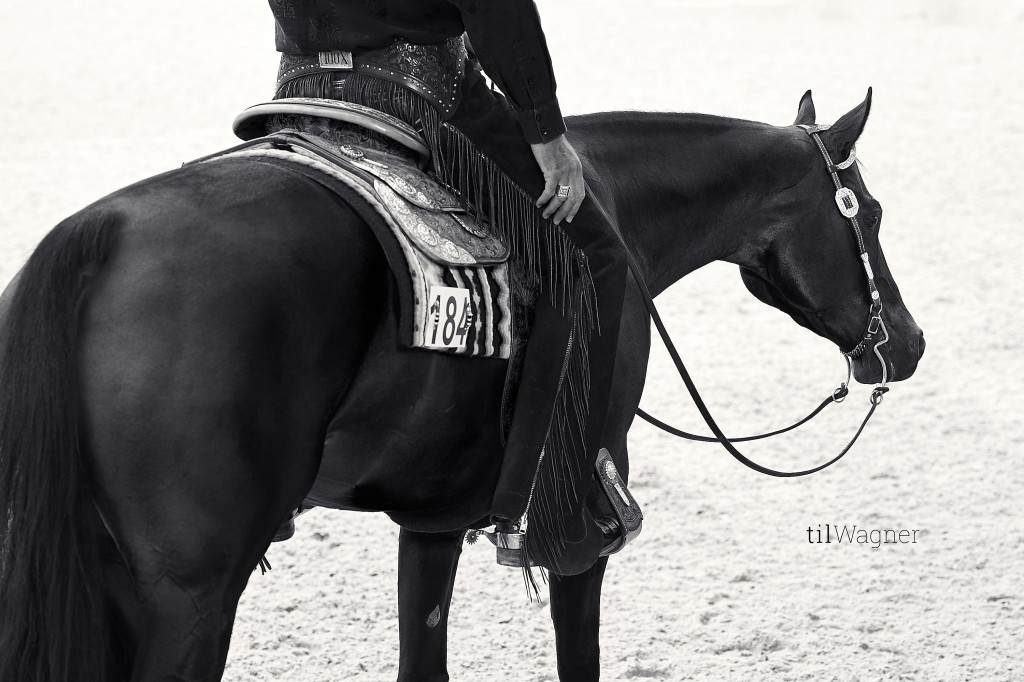 Two black and white pictures from the series Til has taken in Aachen; © Til Wagner Equine Photography