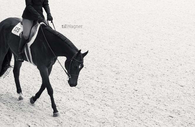 Zwei schwarz-weiß Bilder aus der Reihe, die Til in Aachen gemacht hat. © Til Wagner Equine Photography
