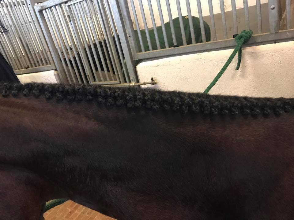 For most people, braiding hunter braids means 'blood, sweat and tears', so why not let Sandra do it?