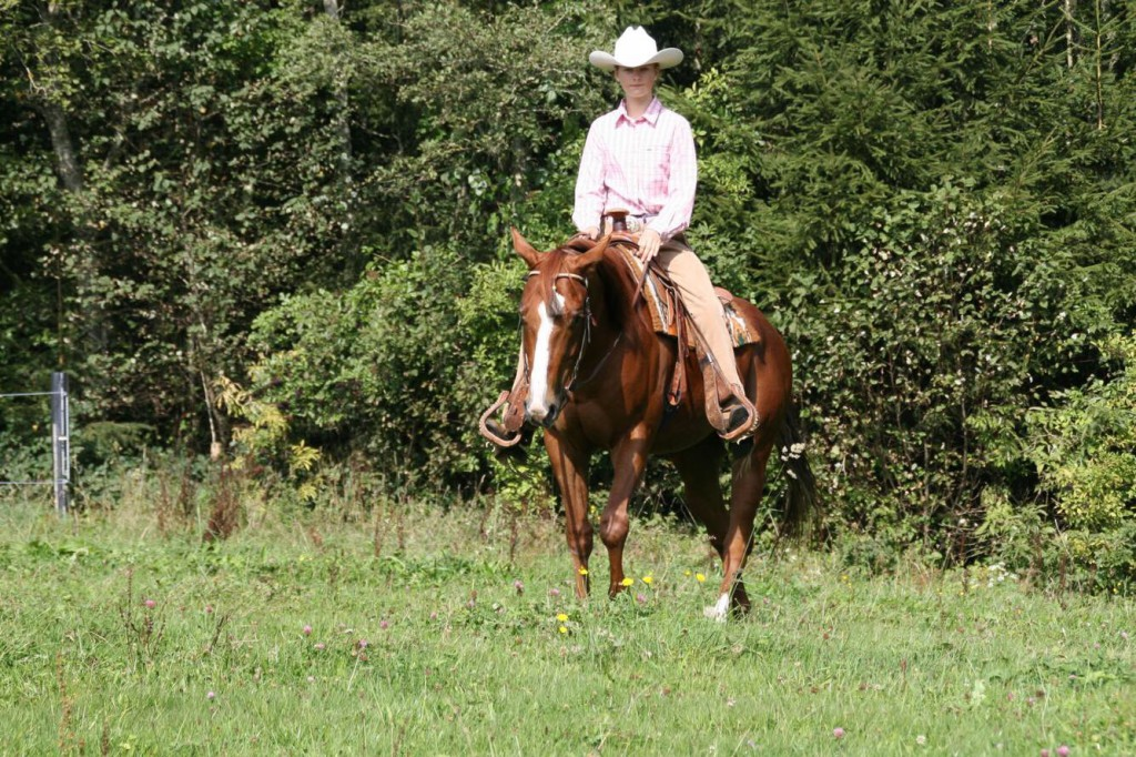 Laura Pfeifer pictured here with her late APHA SPB gelding Hesa Nigel Paycheck