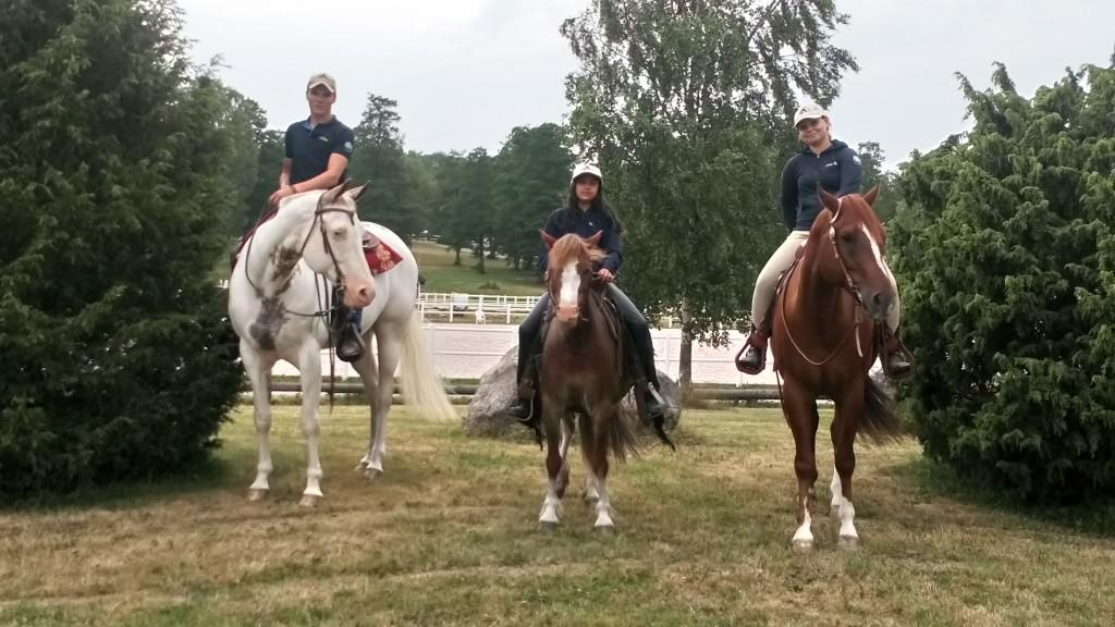 Team Sweden APHA